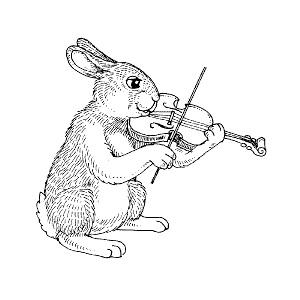 Rabbit Violinist